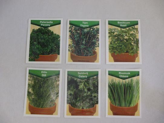 Kruidenmix zaden -