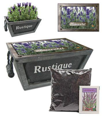 Kistje lavendel paars
